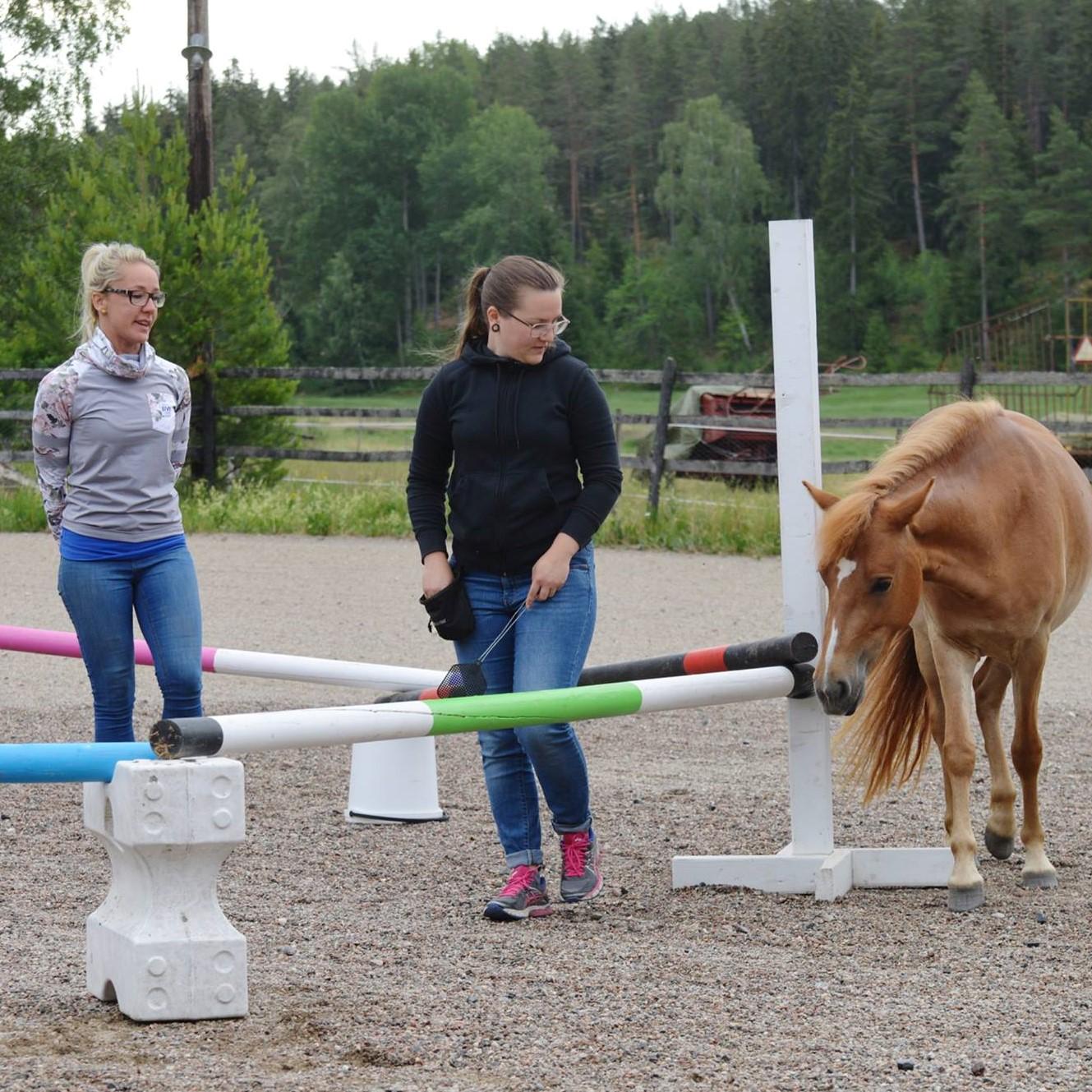 Träningsgrupp Eskilstuna, Strömsholm