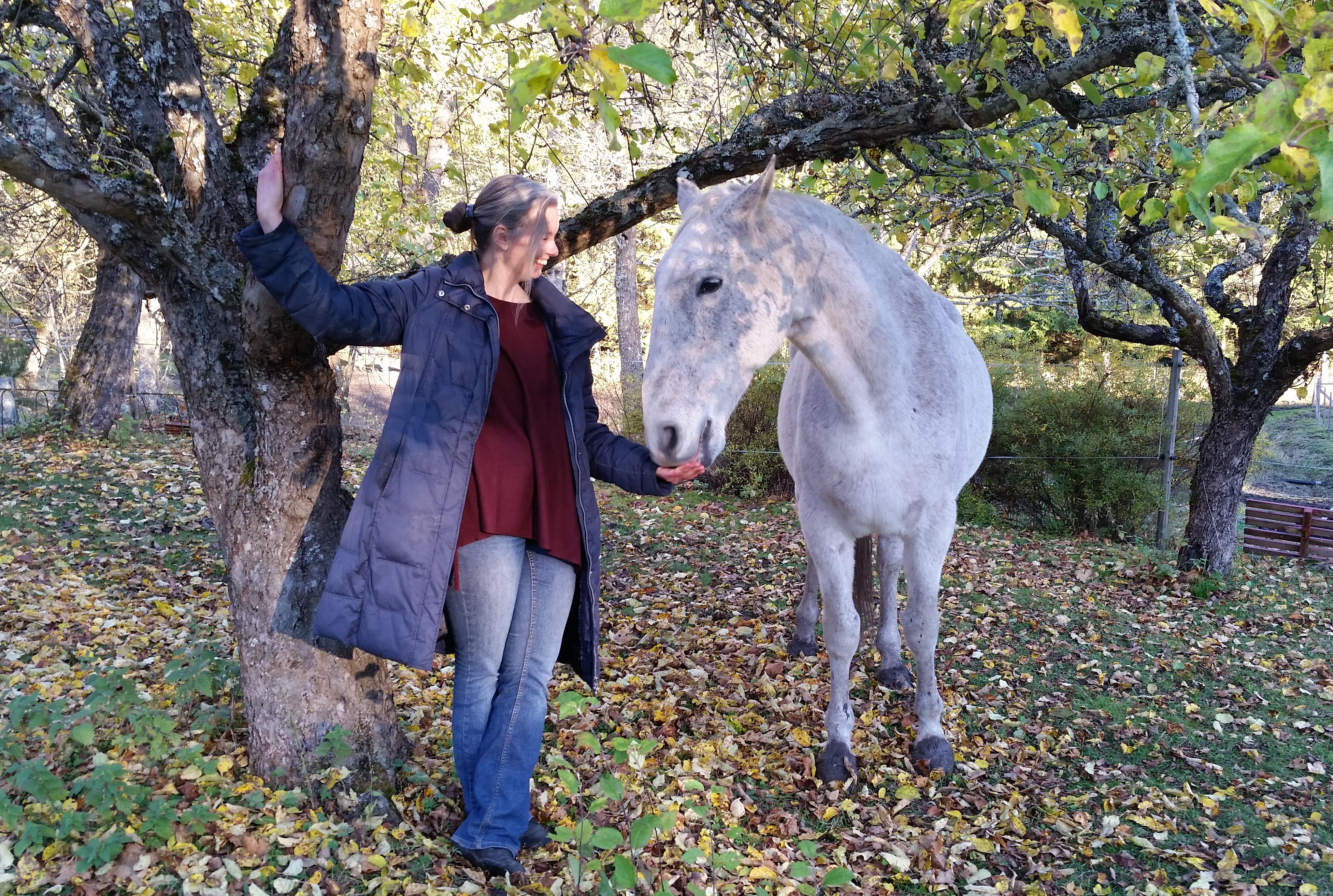 Webbkurs – Vad är belöningsbaserad hästträning?