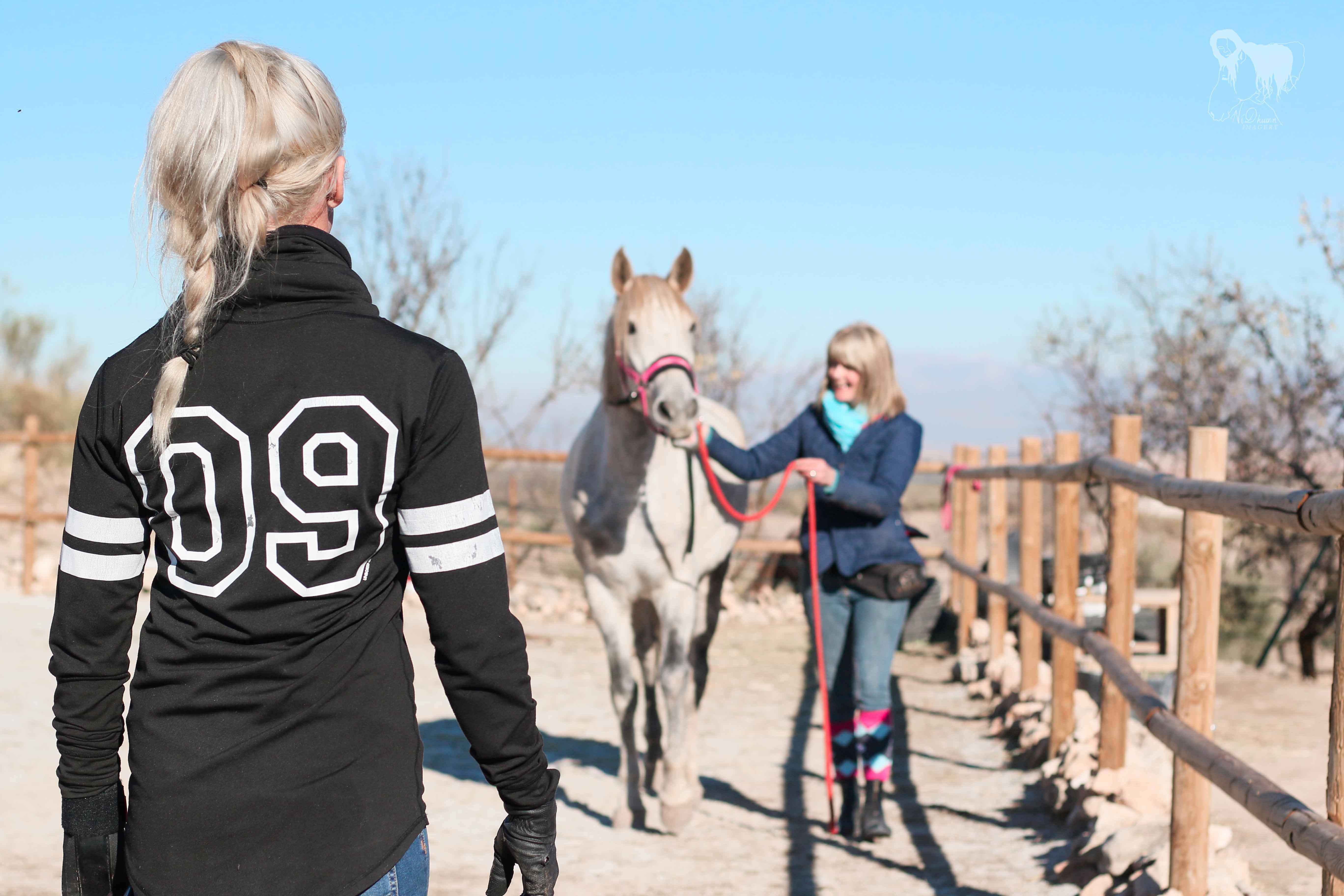 Belöningsbaserad Hästträning- en intensiv långhelg